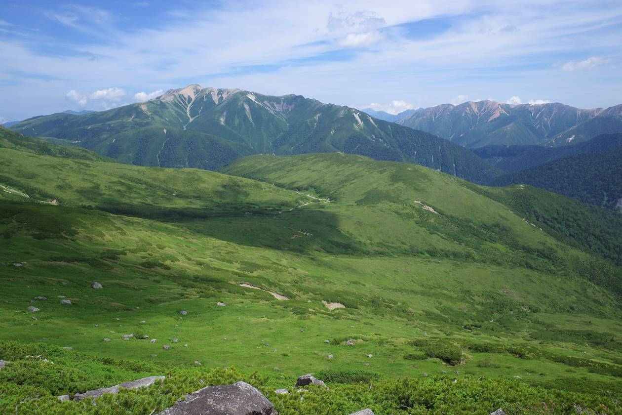 北ノ俣岳の湿原と薬師岳