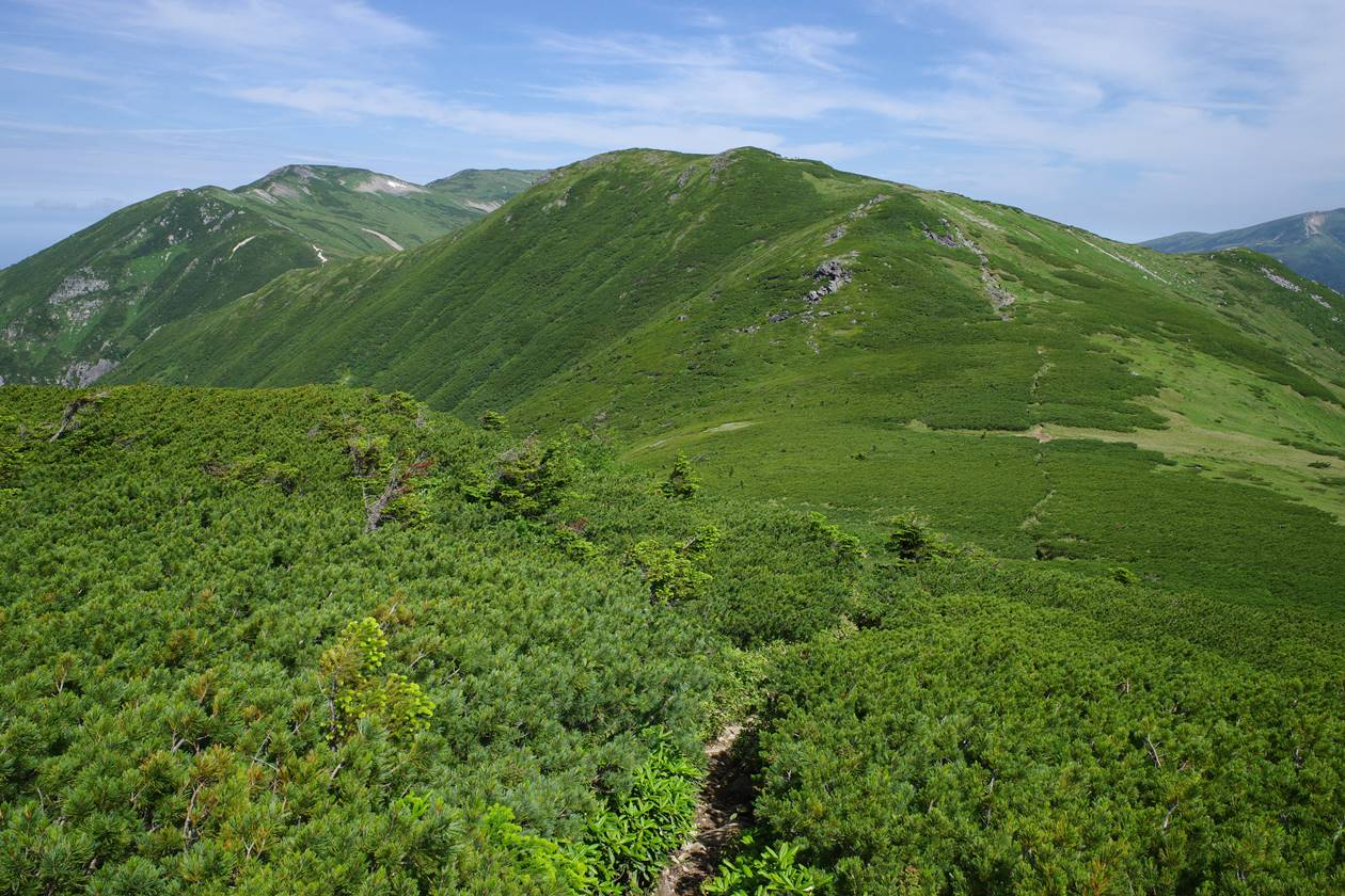 黒部五郎岳~北ノ俣岳~薬師岳の稜線