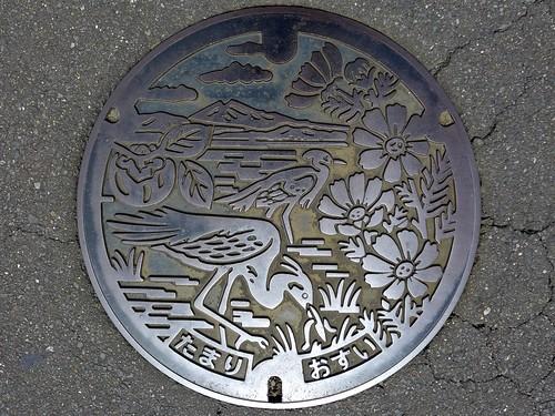 Tamari Ibaraki, manhole cover (茨城県玉里村のマンホール)