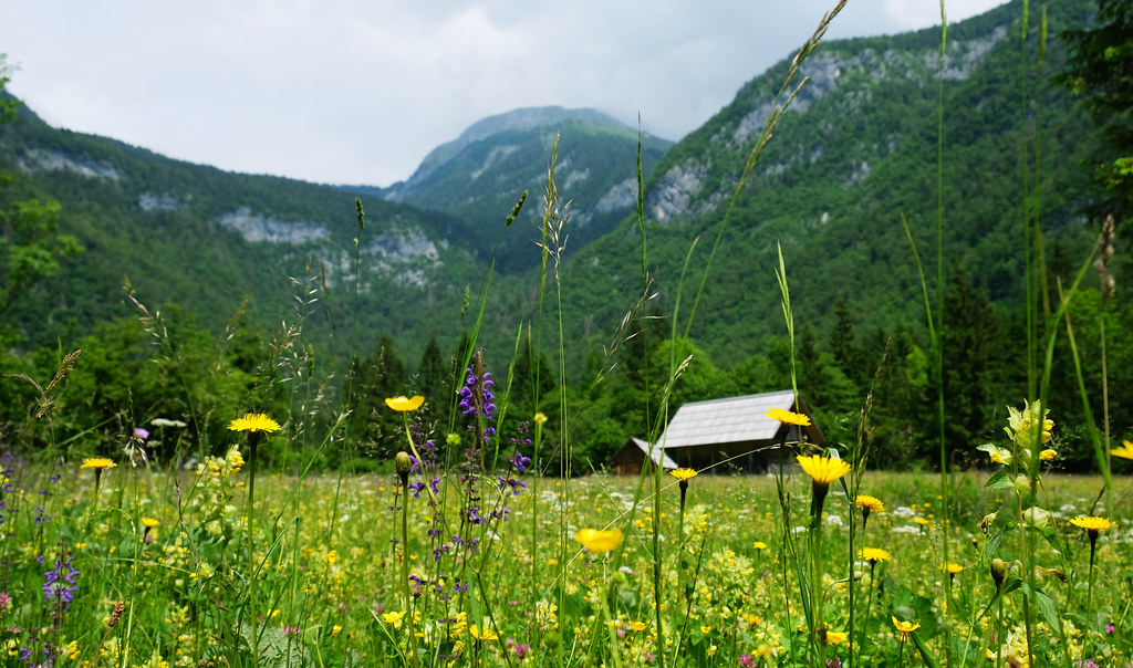 Hiking to Mostnica Waterfall, Slovenia