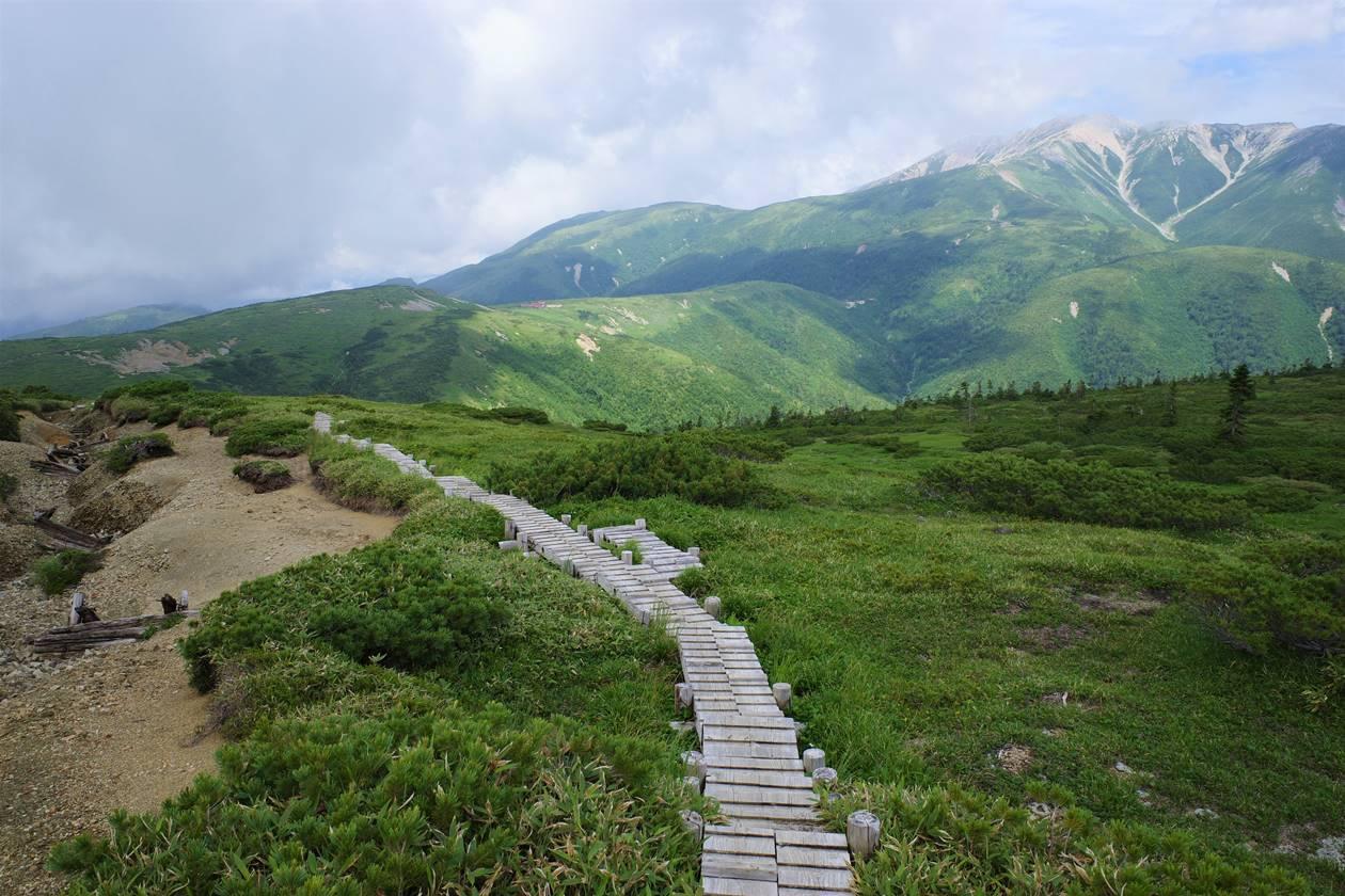 太郎平小屋手前の木道路