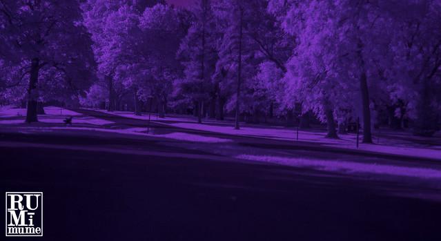 Summer Infrared