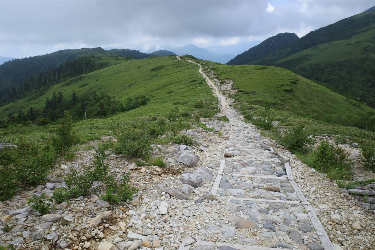 太郎平小屋から折立への遊歩道