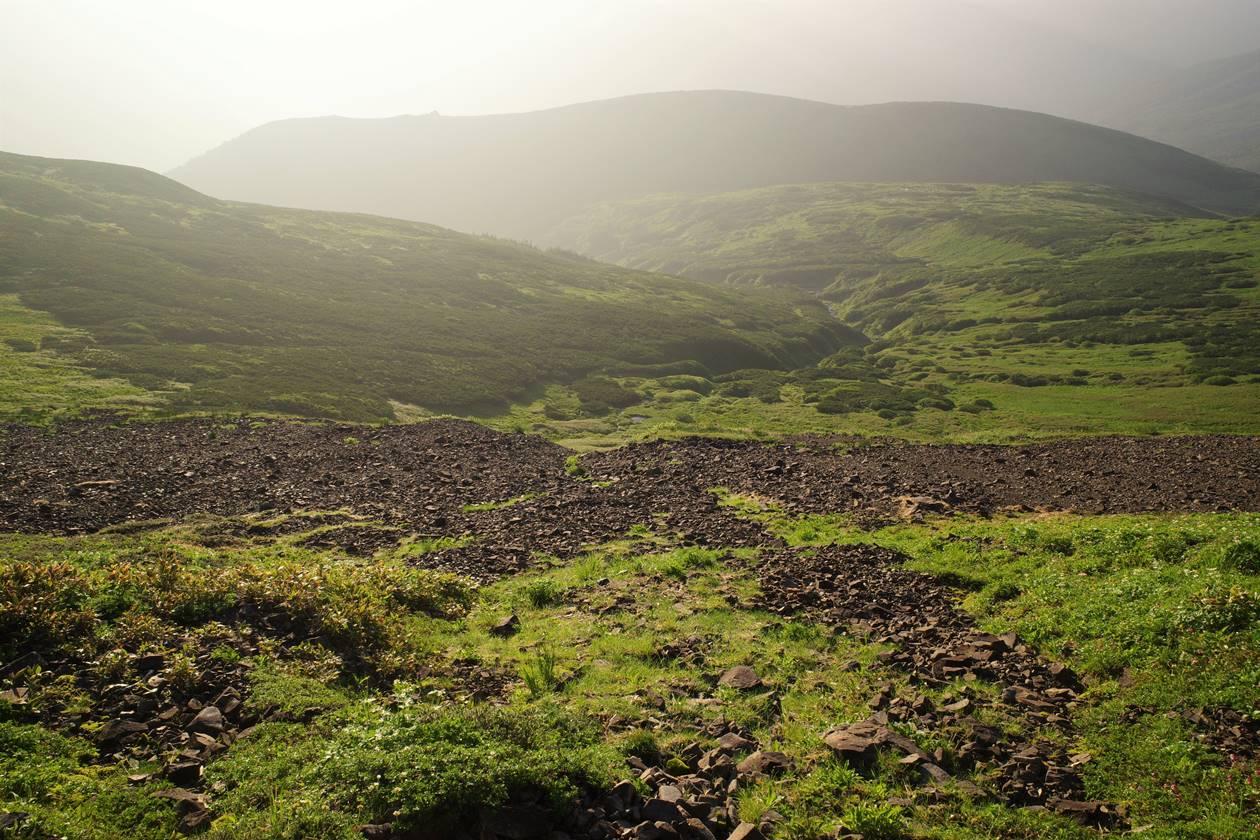 北ノ俣岳の雄大な湿原風景