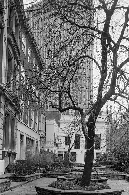 Throgmorton Gardens, City, 1987 87-11a-43-positive_2400