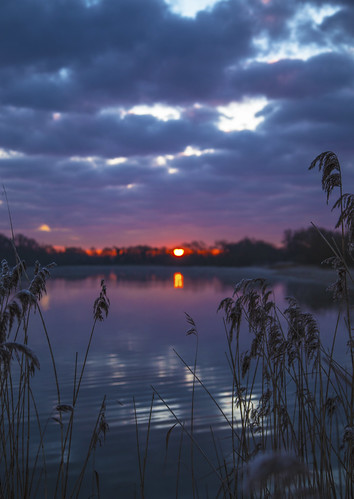 canon6d landscape lake water reflection dawn sunrise clouds sky reeds uk cambridgeshire