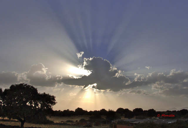 Rayos de luz DSCN0249 (2)