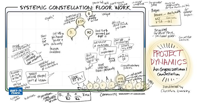 Organizational Constellation on Bickering Team