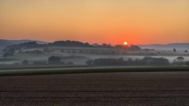 *Golden August morning*