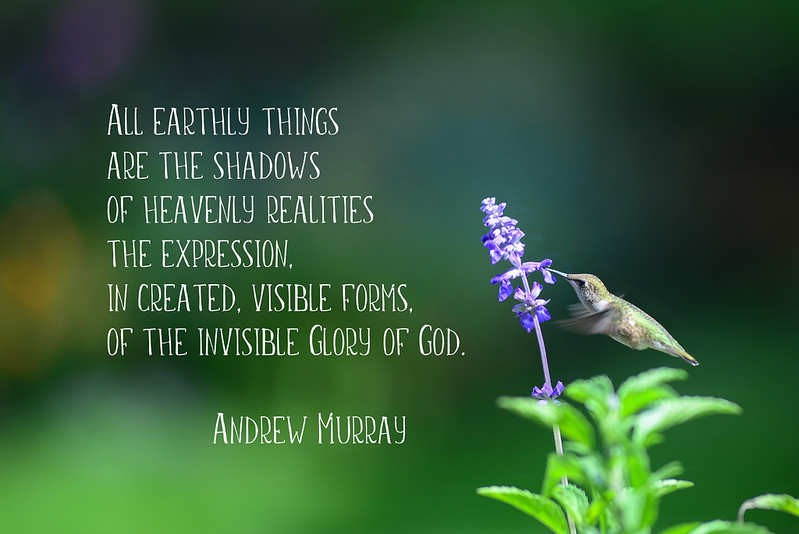 All Earthly Things