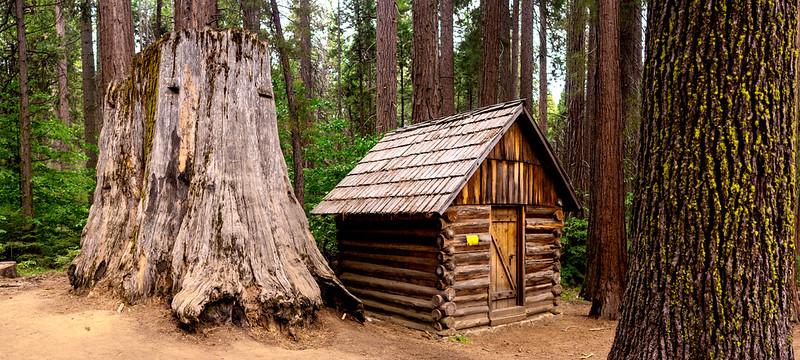 Old logging camp cabin - Nelder Grove - Sierra National Forest