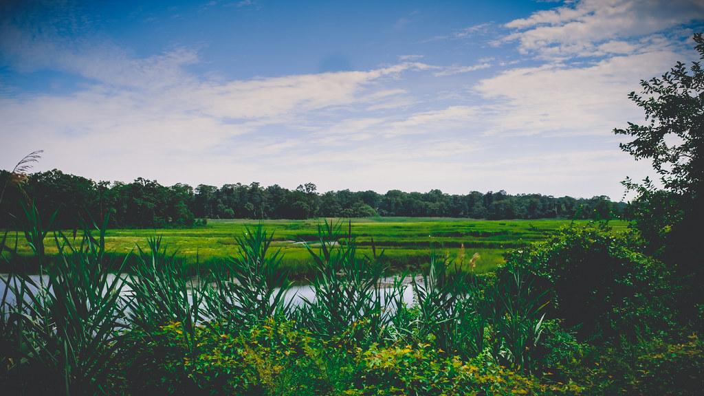 Pelhambay Park