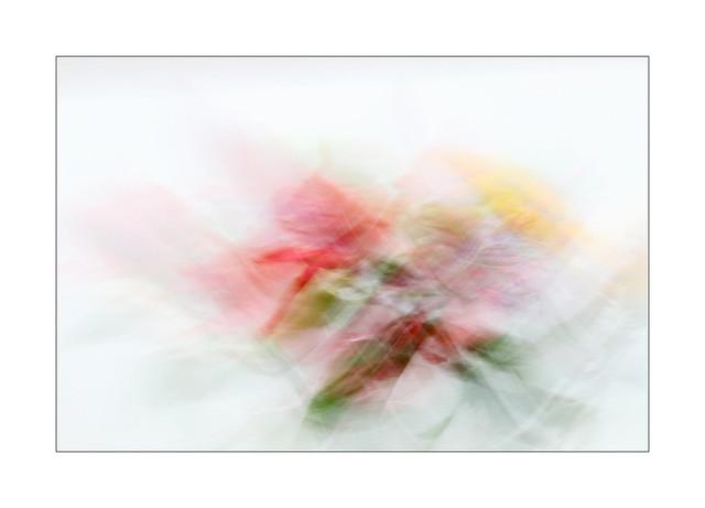 Floral fantasy 3: Texture