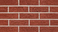 Tulip Reds Bark Texture red Brick