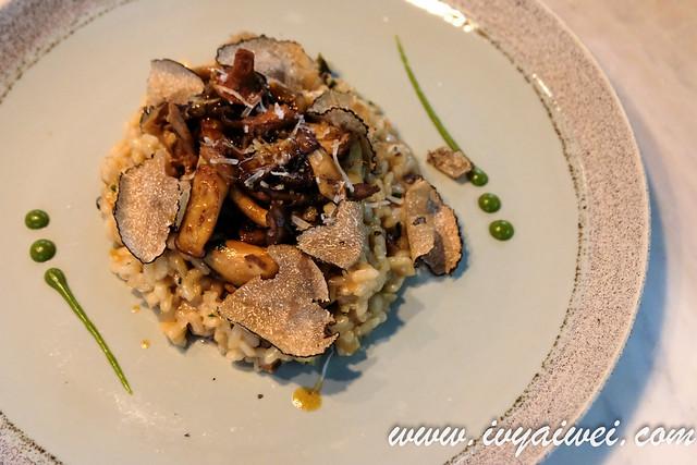 champignons summer truffle (25)