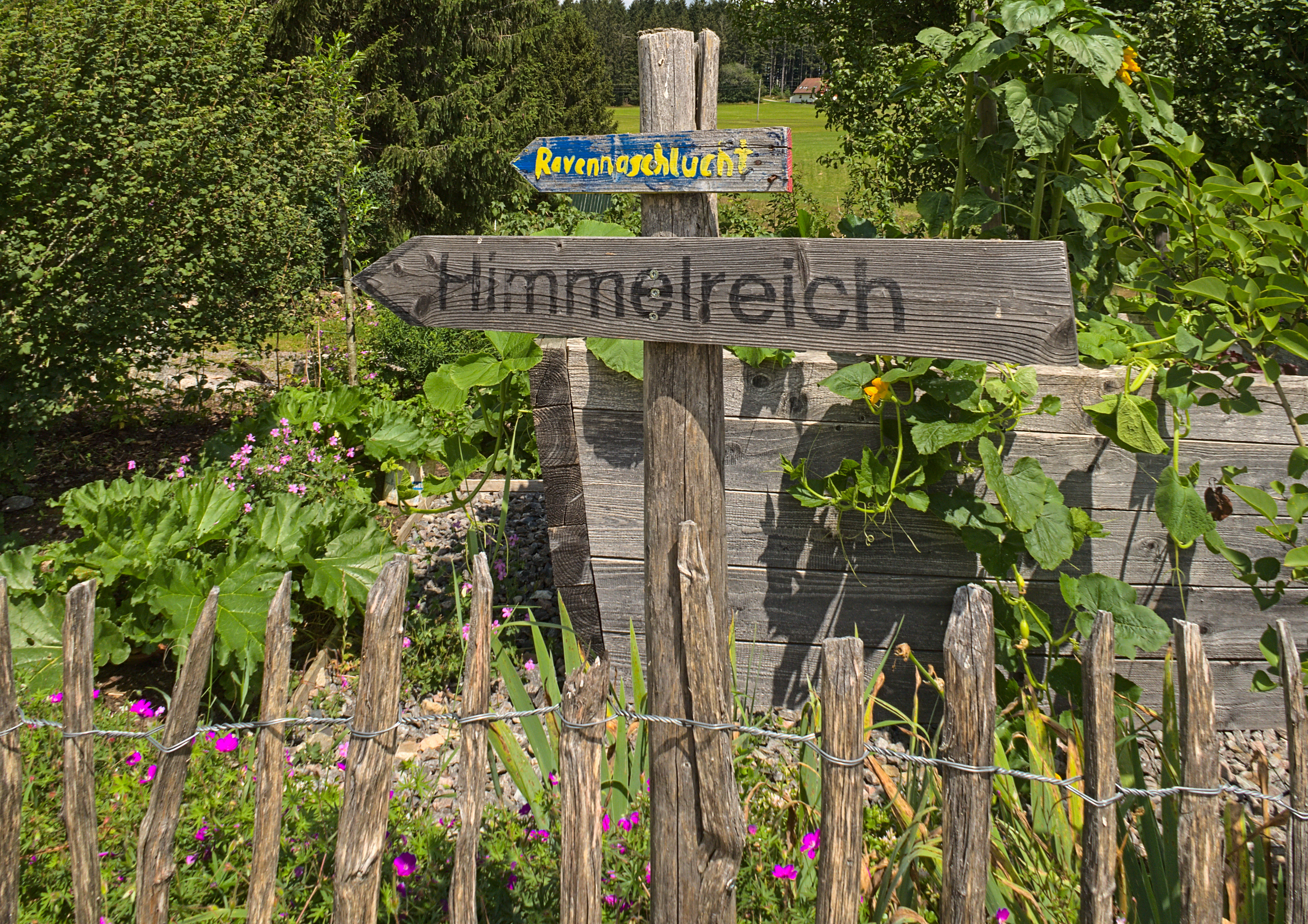 Schwarzwald (Titisee)