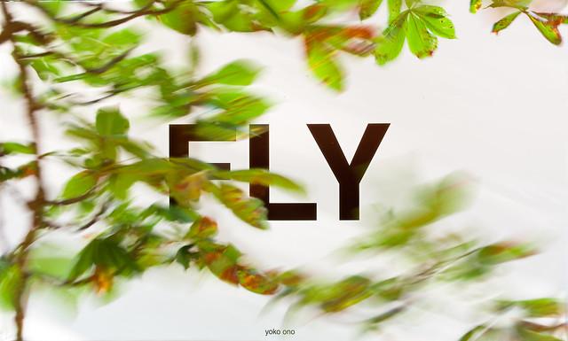 IMGP0843 Fly (Yoko Ono)