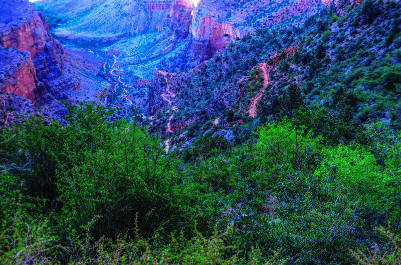 Top of Bright Angel Trail 1