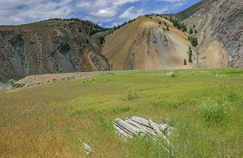 salmonrivercanyon centralidaho grasses canyon mountains