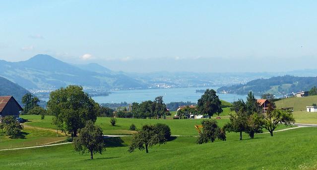 Gommiswald nach Uznach mit Blick auf den Obersee (Oberer Zürichsee) * Gommiswald to Uznach with view of the Obersee (Upper Lake Zurich) * Gommiswald a Uznach con vista al Obersee (Lago Superior de Zurich) * In Explore 💖 *.   P1450954-001