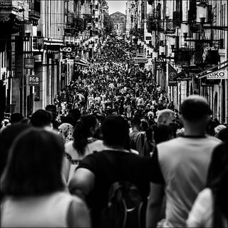 Le regard d'une foule ne voit pas plus loin qu'un homme seul.