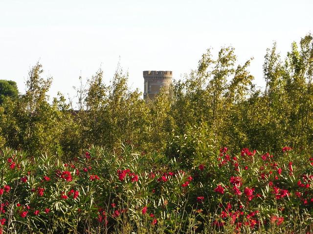 Roussillon landscape