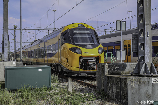 NS ICNG 601003
