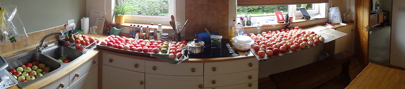 Apple washing, drying, and stewing (panorama)
