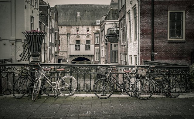 Bicycles 2020
