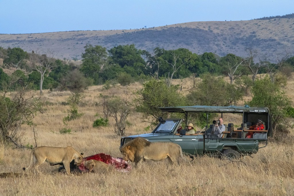 photo of Kenya wildlife tourism