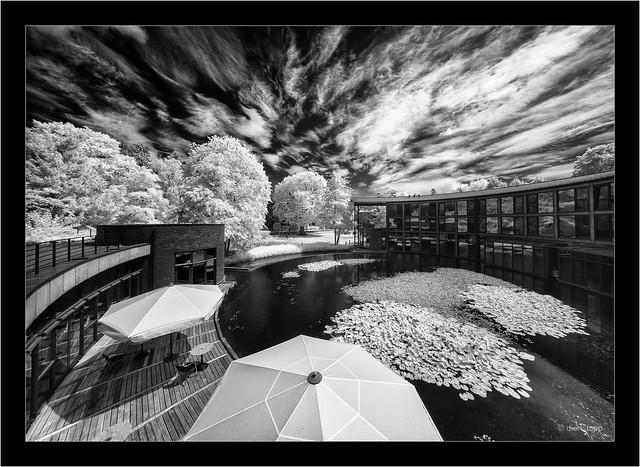 Laowa 10-18mm f/4.5-5.6 FE Zoom, 850nm infrared, Sony A7R
