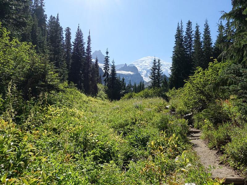 Summerland-Panhandle Gap Mt Rainier National Park - 46