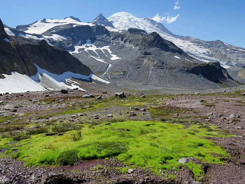 Summerland-Panhandle Gap Mt Rainier National Park - 31