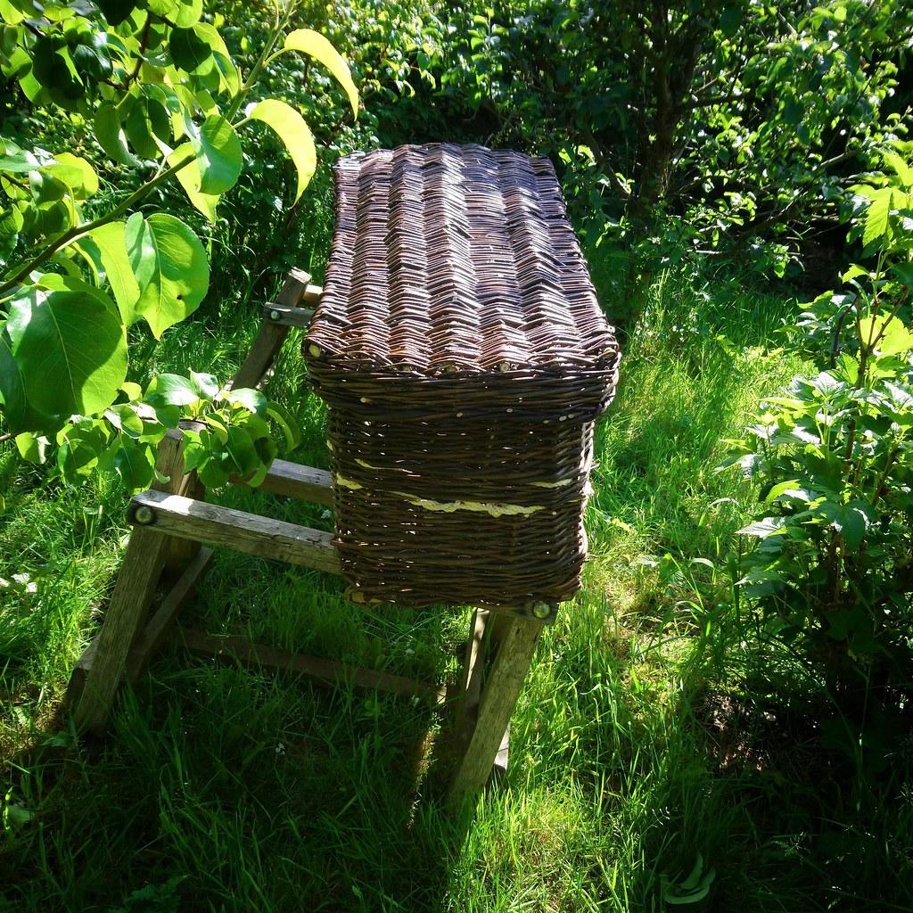 Coffin in a leafy garden