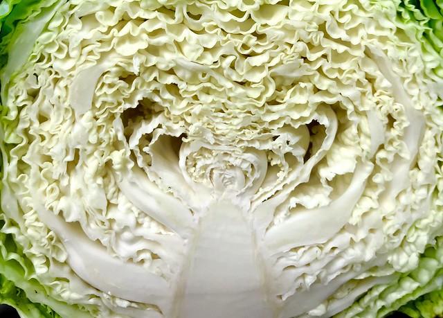 Savoy Cabbage Heart