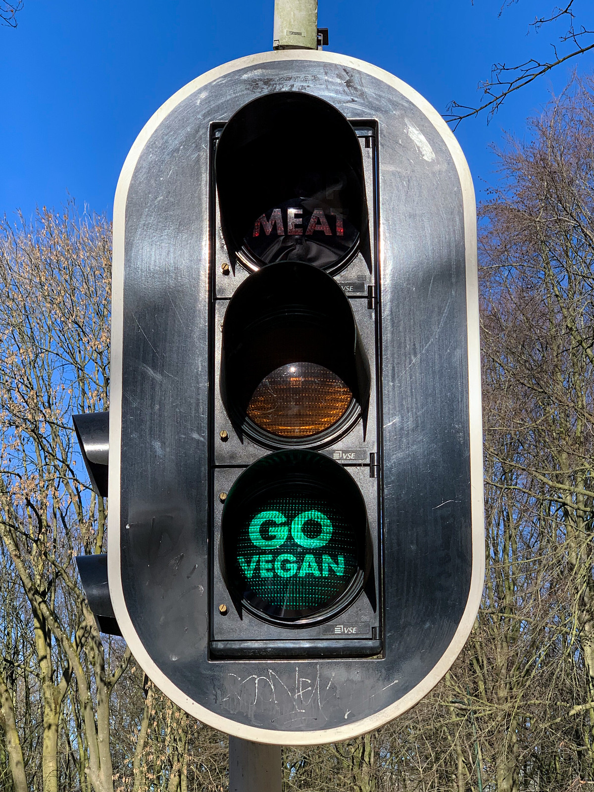 """Go Vegan"" Green Light"