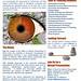 Vision Brochure5Aug2020 English