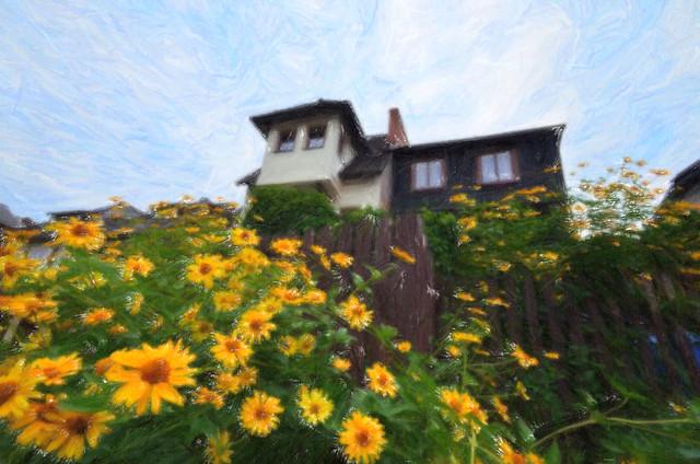 Sunflower home (oil on canvas)