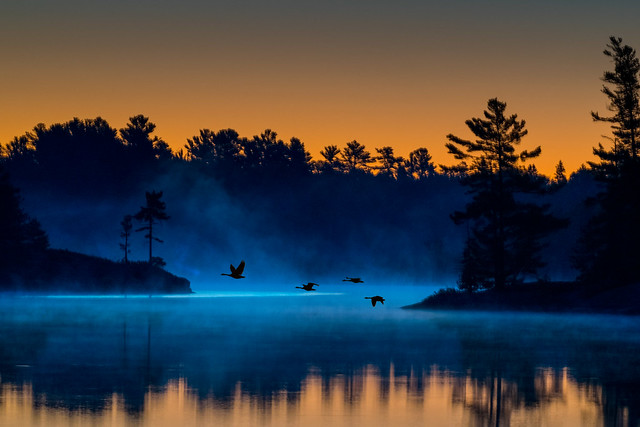 Grundy Lake Sunrise Blues - 8065