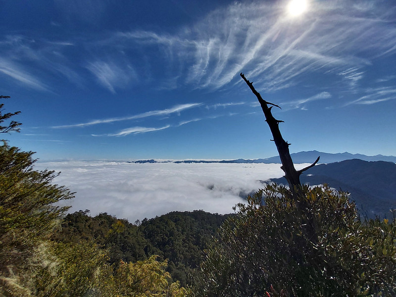 Smangus-sea of clouds underneath Holly Ridge Trail