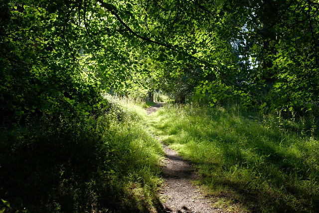 Secret Pathways