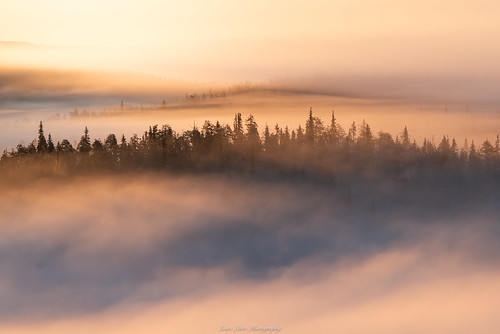 suomi finland oulankanationalpark kansallispuisto nationalpark sunrise fog mist early morning cliff view forest nikon d750 tamron 70210mm telephoto photography travel hike outdoor clouds