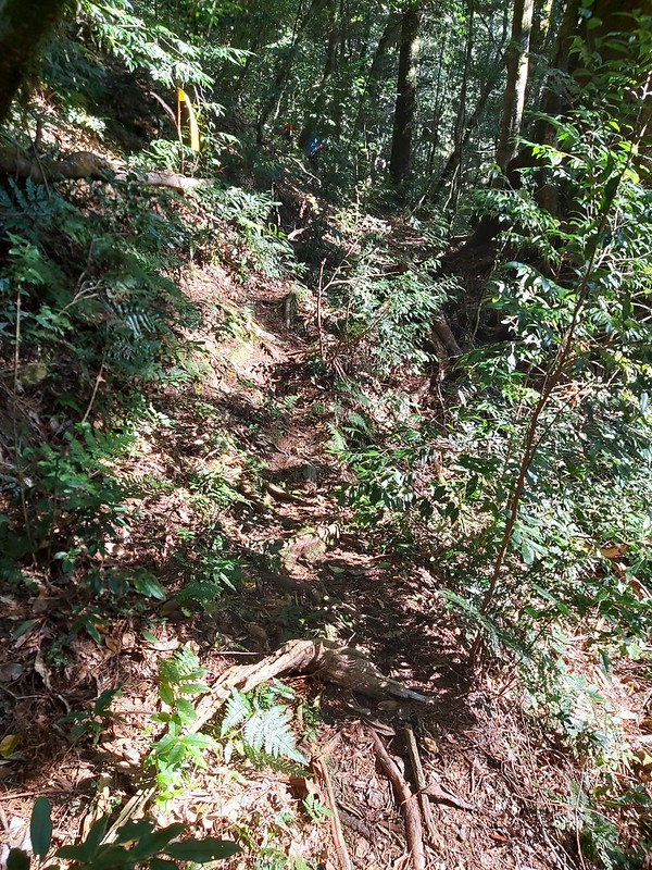Smangus-a narrow trail