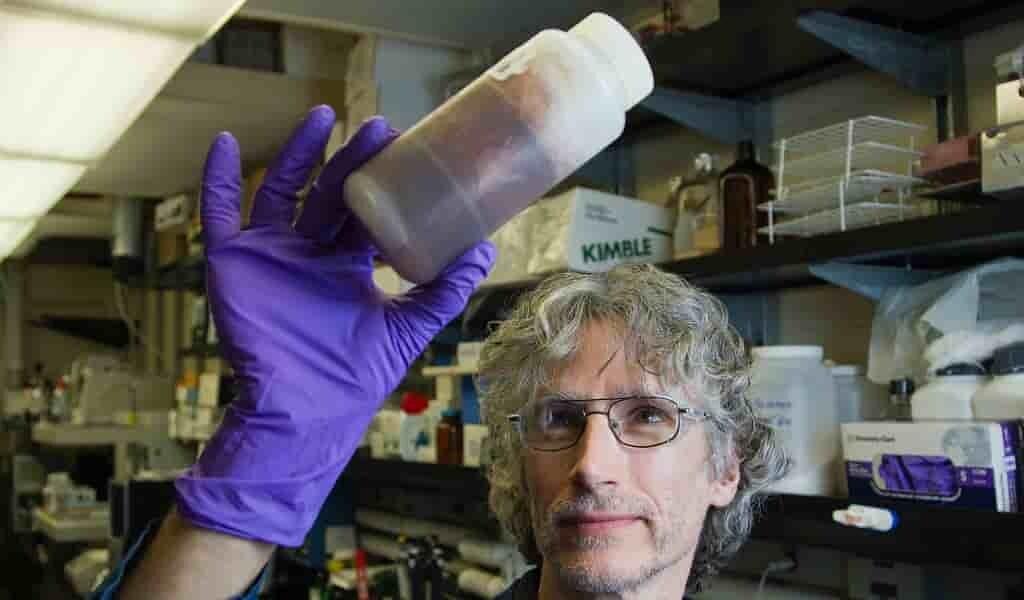 des-capsules-de-cellules-souches-réparent-le-coeur