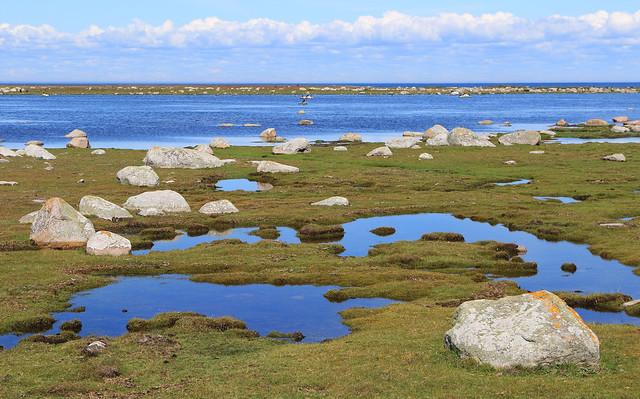 Ottenby Nature Reserve, Öland