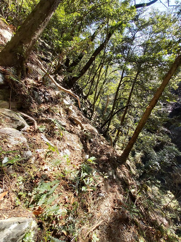 Smangus- scary trail on the sidehill