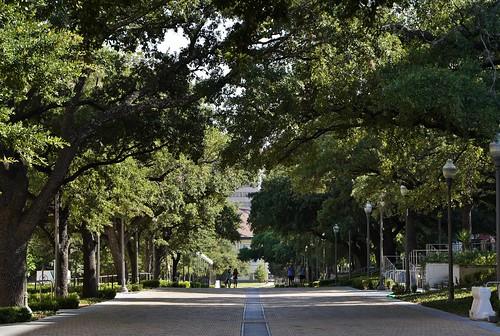 University of Texas: Speedway
