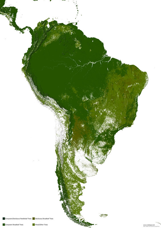 Map of forests of South America