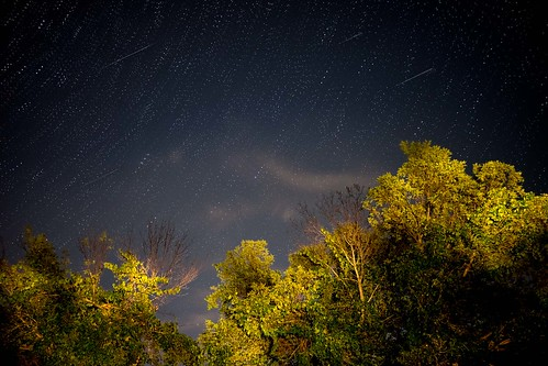 canada grimsby landscape night ontario ortbaldauf tree colours meteor nature niagara niagaraescarpment ortbaldaufcom outdoors photography stars summer perseid shower