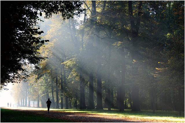 Sonntagmorgen, Dresden, Großer Garten